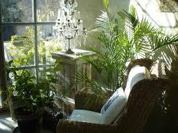 Comment mettre sur pied un jardin d'hiver ?